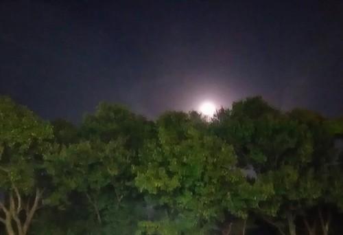 20180131_super_moon_01a.jpg