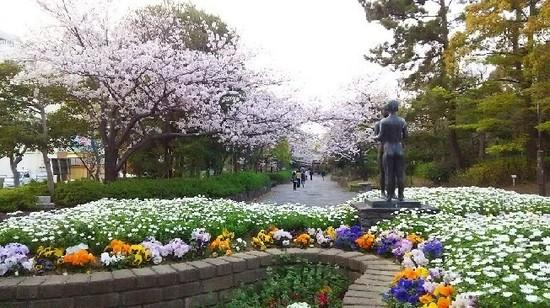 20190406_像と桜a10.jpg