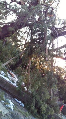 2014雪の被害1.jpg