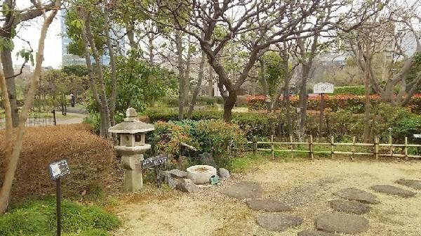 20190330_木場公園_02a02.jpg