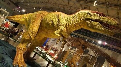 ギガ恐竜展2017_6a.jpg