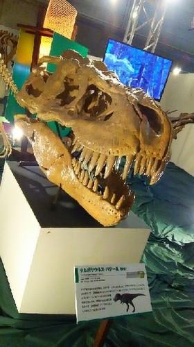 ギガ恐竜展2017_9a.jpg